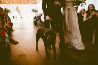 Sodo Park Wedding in Seattle | Bride & Groom's dog in ceremony processional | Perfectly Posh Events, Seattle Wedding Planner | Andria Lindquist Photography